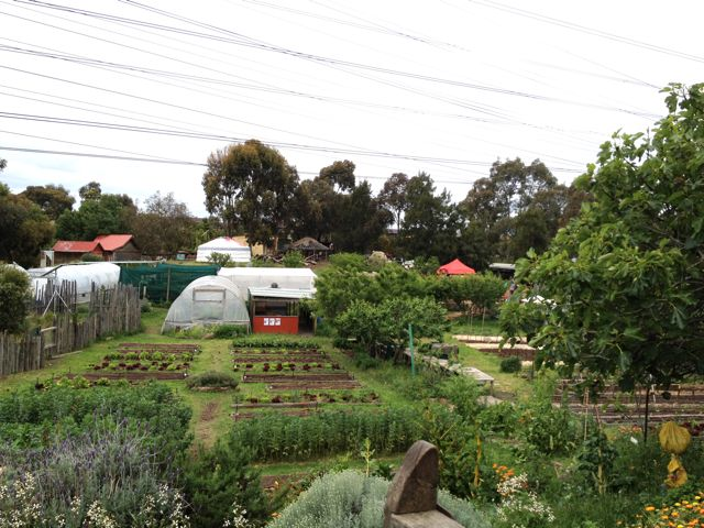 CERES farm