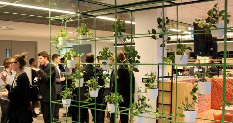 plants at 5 star green star perth office