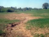 Soil_erosion_at_Hill_Farm