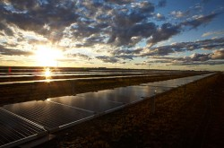 Moree Solar Farm