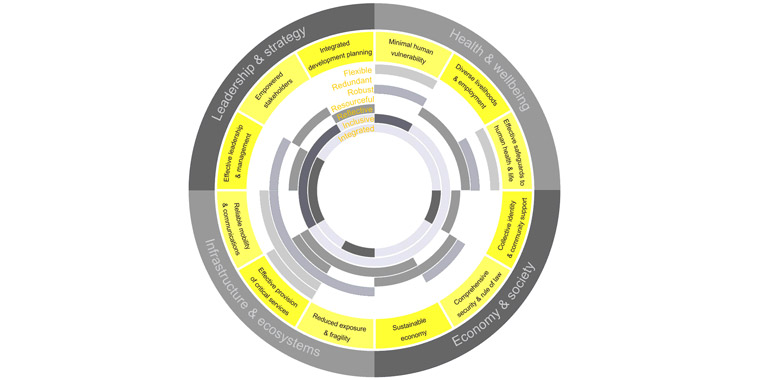 The City Resilience Framework