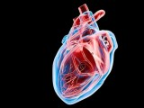 Heart disease danger from office pollution