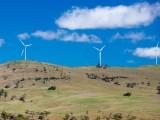 wind-farm-125683499