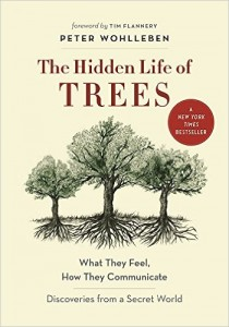 the-hidden-life-of-trees