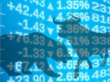 stock-exchange-913982_1920