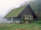 green solar