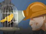 canary coal mine, dodgy products