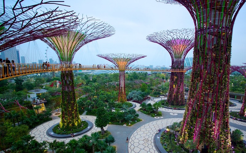 Biophilic Gardens by the Bay in Singapore