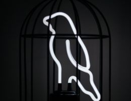 neon bird in cage