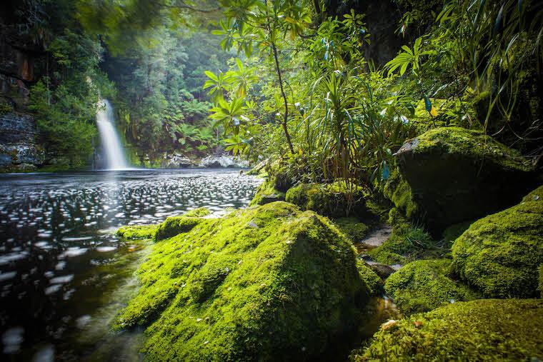 Franklin River, Tasmania