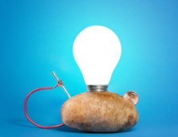 potato powered light