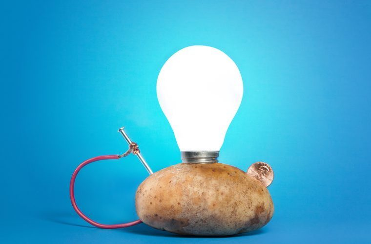 potato powered light