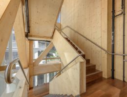 Are we fast enough for change: a global view of design and timber
