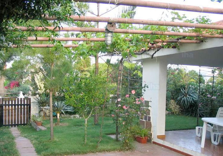Pergolas with fruit
