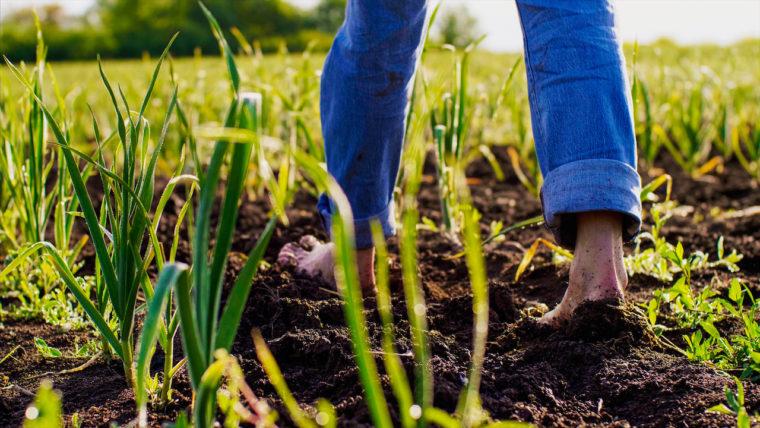 Barefoot farmer