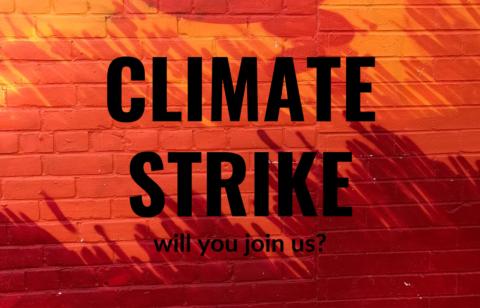 CLIMATE STRIKE (1)