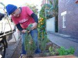 Michael Mobbs gardening